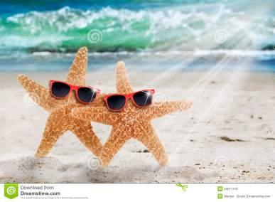 two-starfish-beach-sunglasses-29311416